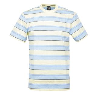 Iriedaily Tony Stripe Tee Relaxed T-Shirt Lemonade