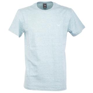 Iriedaily Chamisso T-Shirt Ice Blue Melange S