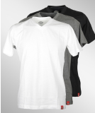 Dickies V-Neck T-Shirt 3er Pack Assorted Color